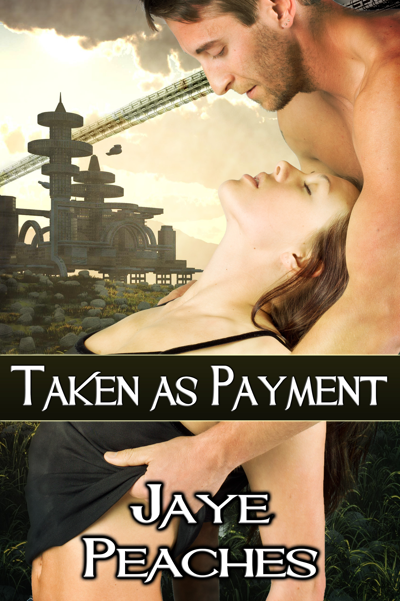 Book Cover: Taken as Payment